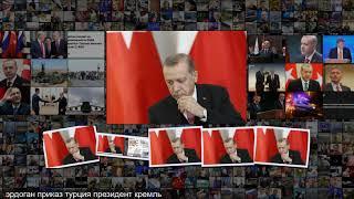 Кремль прокомментировал данные о личном приказе Эрдогана сбить Су-24 Политика Россия