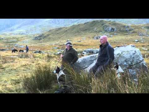 Parc Cenedlaethol Eryri - Ogwen - Snowdonia National Park