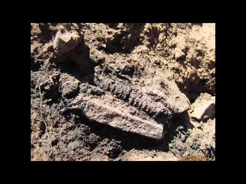 """Dave Dove """"Update on Excavations at Champagne Spring Ruins"""" Dove Creek, Colorado"""