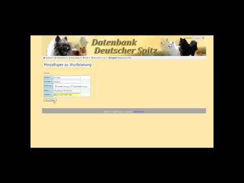 Wurfplanung über zwei Generationen / Datenbank-Deutscher-Spitz