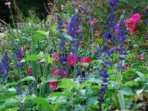 Cottage Garten Design Ideen Youtube