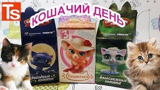 Кошачий день. Sweet box пушистики 3, Секретик радости белоснежные котята и звездные котята