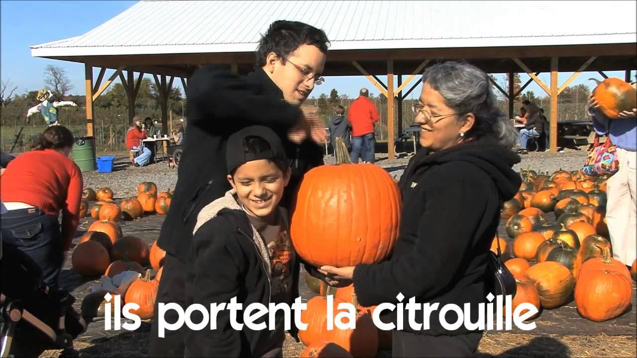 Vocabulaire ils for Portent translation