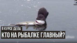 Кто на рыбалке главный В курсе дела 26