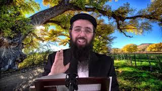הרב יעקב בן חנן - מה זה פ''ד תעניות ומה עושים בפידיון?