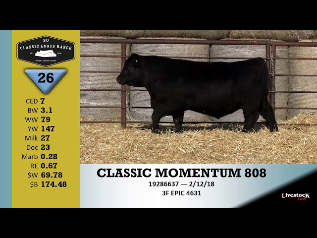 Classic Angus Ranch Lot 26
