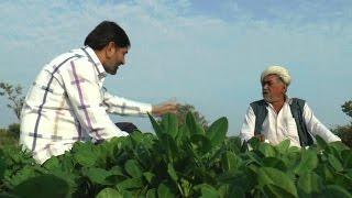 Organic Farming In Surat || Maru Gam Maru Gujarat