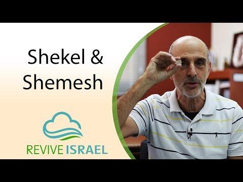 Shekel & Shemesh