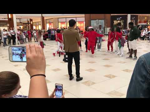 Sean's Dance Factory Flashmob interrupted by Aventura Police 12/15/18