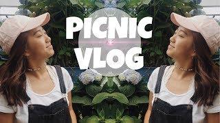 Picnic | MivanVlogs