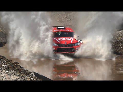Bora Manyera - Cem Çerkez | Skoda Fabia R5 | 2019 Rally Turkey