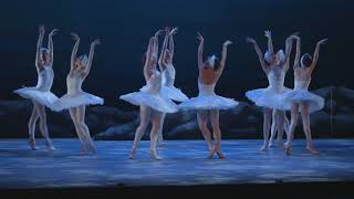 My First Ballet: Swan Lake – short swan excerpt | English National Ballet