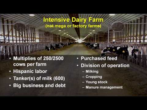 U.S. Dairy Industry