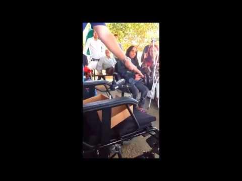 Instruções Básicas da Cadeira de Rodas Motorizada Freedom (Freedom Lumina LM'13)