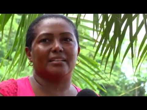 BAUDOSEANDO Movilización social por la Vida, la Paz y la Defensa del Territorio