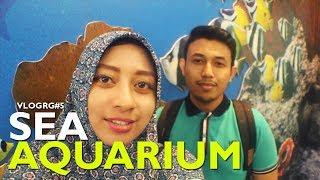 Vlog Singapore #3 - Sentosa Island ke Sea Aquarium Terbesar