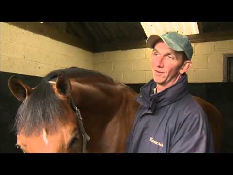 Showjumping - Phillip Miller At Home - 2012