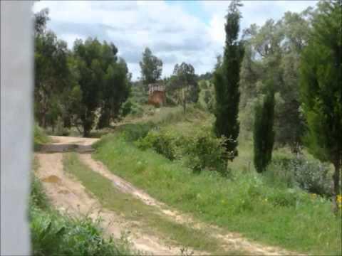Monte Vale Pereiro Intro