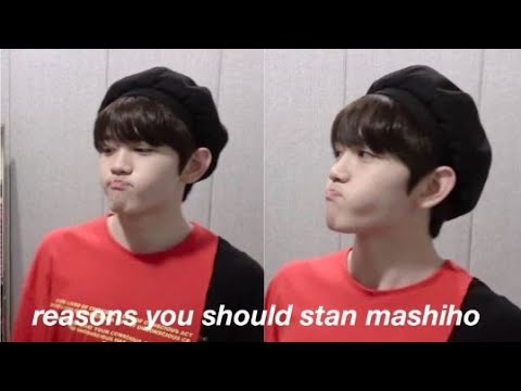 why you should love and appreciate mashiho