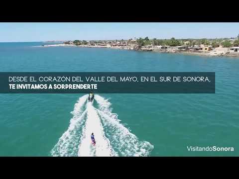 El SUR de SONORA #VisitSonora #Sonora #ExperienciasInolvidables