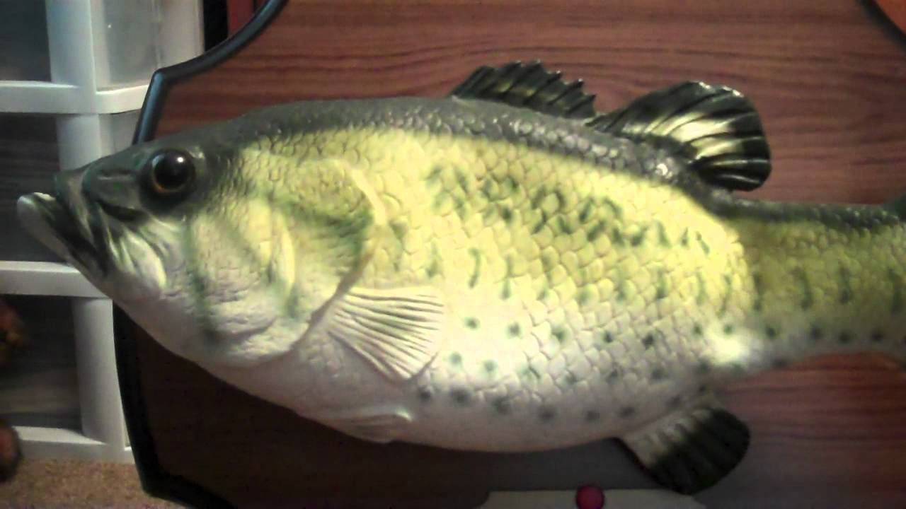 Vintage 1999 Gemmy Big Mouth Billy Bass Singing Mounted Fish
