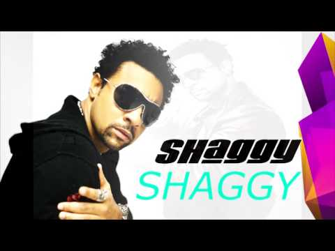 shaggy it wasnt me