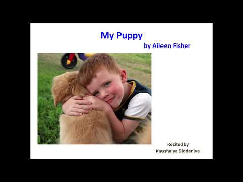 My Puppy By Aileen Fisher   Let's Recite A Poem!!!