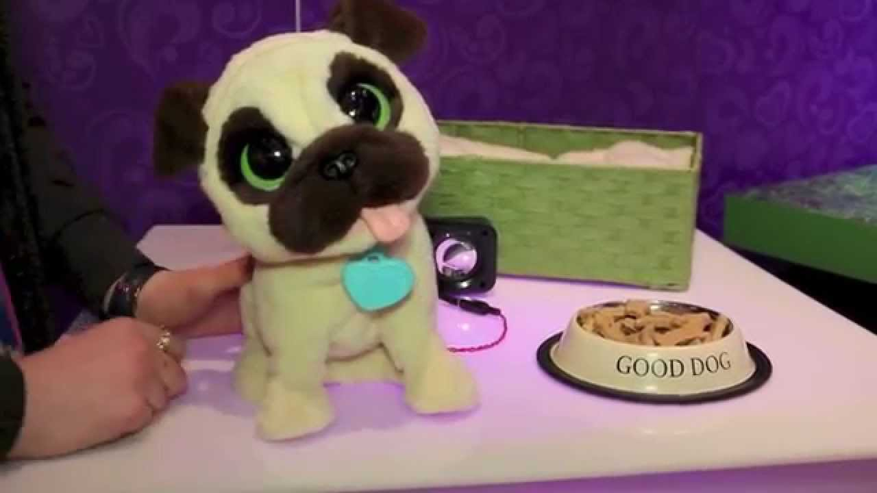 bg review new furreal jj my jumping pug dog youtube. Black Bedroom Furniture Sets. Home Design Ideas