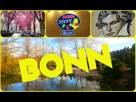 Bonn: what to see in ex-capital of Germany