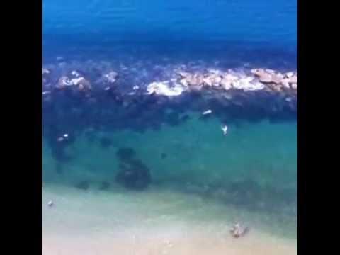 Vista desde la habitaciones en Costa Sur Puerto Vallarta