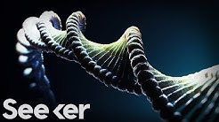 ?Dark DNA? Is the Latest Mystery in the World of Genetics? But What Is It?