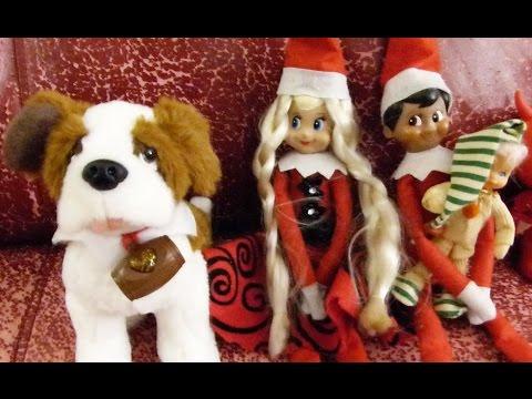 Elf on the Shelf: Cats vs Dog!