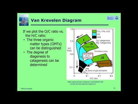 Source Rocks & HC Generation - Petroleum Exploration: A Field Example