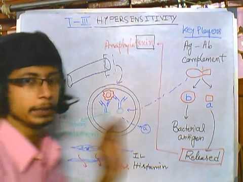 Type 3 hypersensitivity