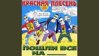 Скачать все песни Песня Зятя из ВКонтакте и YouTube 8d37f1b4dc576