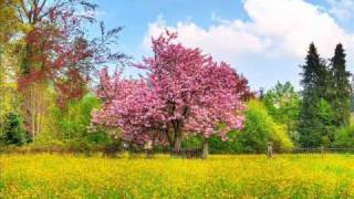 abraham hicks what is your relation with your inner being