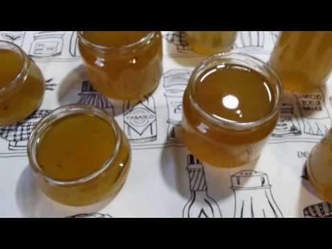 Prolećna delicija - marmelada i sirup od maslačka