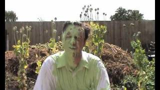 Steve Cole reads The Slime O