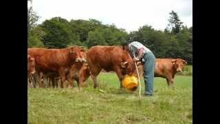 A la rencontre de l'agriculture chez Michel et Julien COGNERAS