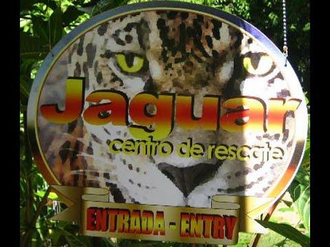 Jaguar Rescue Center,  Puerto Viejo, Costa Rica