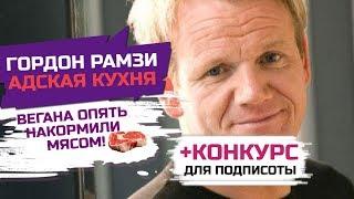 Гордон Рамзи в шоке, шеф-повар не знает кто такие песко-вегетарианцы (КОНКУРС!)