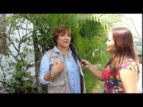 Tele Noticias Cerro Azul
