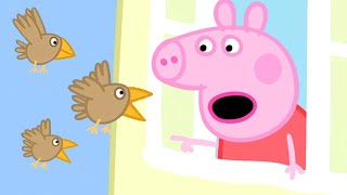 Peppa Pig's Seeds have Been Stolen by Birds! | Kids TV and Stories