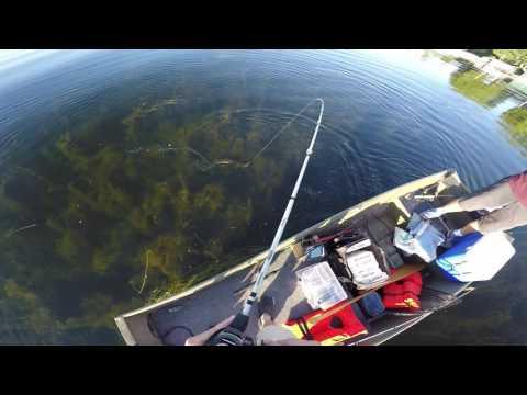 Bass Fishing Lake Minnetonka MN
