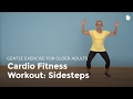 Aerobic Exercise: Sidesteps | Exercise for Older Adults