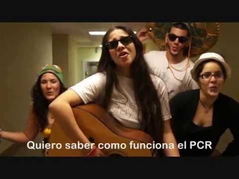 """""""PCR del DNA"""" song"""