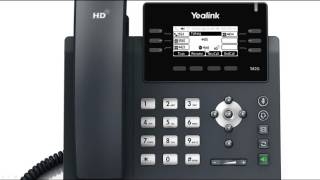 T41P/T42G IP Phone - Hold and Mute