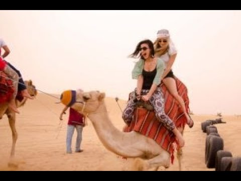 Desert Safari Dubai, Evening Safari , Dune Bashing, Camel Ride, Belly Dance, BBQ Dinner in Safari