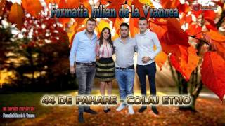 FORMATIA IULIAN DE LA VRANCEA - 44 PAHARE, COLAJ ETNO 2016