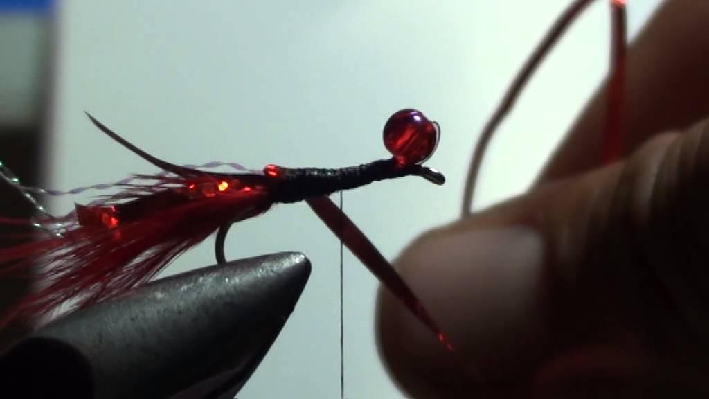 cum arată o larvă cu cap rotund